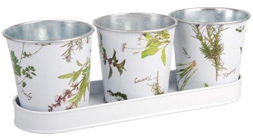 Esschert Design Herb Print Galvanized Steel Flower Pots With Saucer Set Of 3