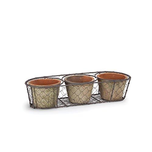 Abbott Collection Triple Moss Pot In Basket