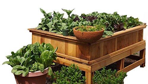 4X6 Garden Box Kit wLegs 30 tall Redwood