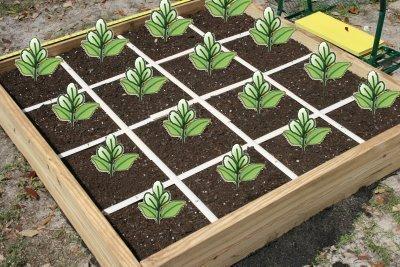4ftx4ft Grid Kit for Raised Bed Square Foot Garden Sturdier Easier