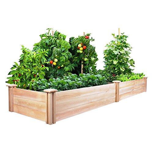 Greenes Cedar Raised Garden Kit 2 Ft X 8 Ft X 105 In