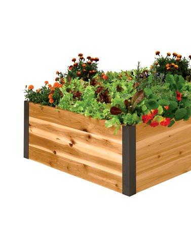Cedar Raised Garden Bed 3 x 8 x 15
