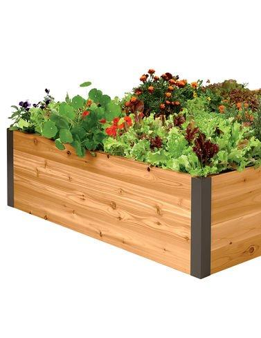 Cedar Raised Garden Bed 4 x 8 x 15
