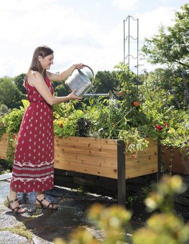 Gardeners Supply 2 Ft x 8 Ft Raised Garden Bed Elevated Cedar Planter Box Standing Garden 24 x 96