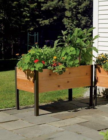 Gardeners Supply Co 2 Ft x 4 Ft Raised Garden Bed Elevated Cedar Planter Box 24 x 48 Standing Garden