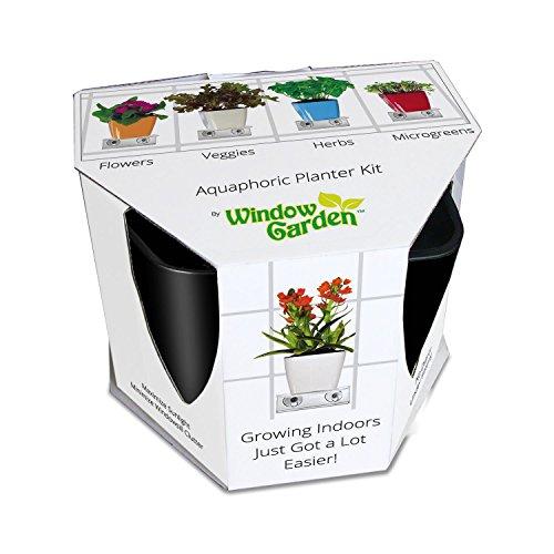 Aquaphoric Indoor Garden Kitndash Self Watering Planter  Window Shelf  Fiber Soil  Thriving Herbs Vegetables