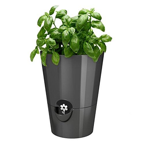 Emsa Germany - Indoor Gardeningamp Self-watering Planter Keeping Kitchen Herbs Freshamp Healthy For Weeks