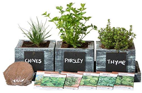 Herb Garden Planter By Planter Pros - Complete Herb Garden Kit - Indoor Garden Seeds Growing Kit - Grow Cooking