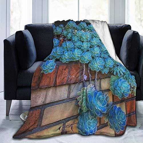 WUHAN1 Succulent Garden Ideas for You Garden Ultra-Soft Micro Fleece Blanket Black 80 x60