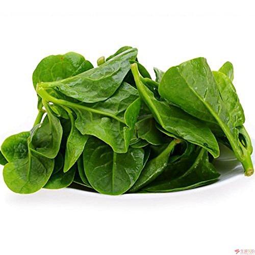 Generic 100 Malabar Spinach Vine Seeds Big Harvest Vegetable Seed