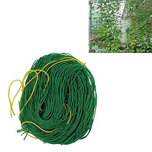 KINGLAKEÂ Durable Nylon Trellis Netting Garden Netting 59Ft x 118Ft for Climbing PlantsCucumbersFlowers VineVegetables