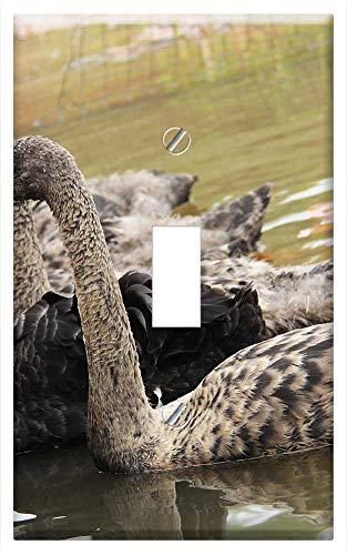 Switch Plate Single Toggle - Swan Beautiful Koi Lake Pond Fish Park Garden