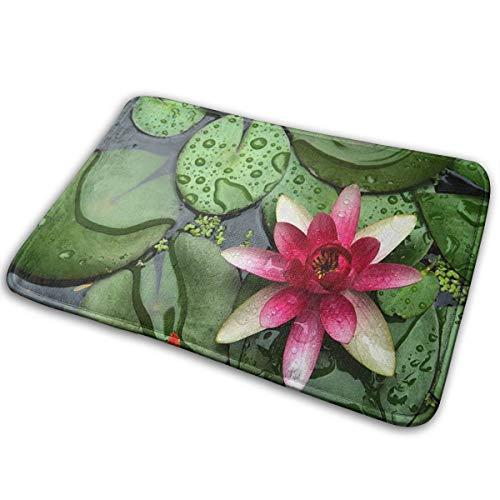 Universal Anti SlipDoor Mat - Size 16 X 24Entrance Outdoor Indoor Welcome MatRectangular Anti Slip Doormat Beautiful Pond Water