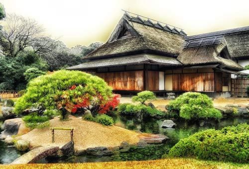 Home Comforts Pond Building Temple Trees Plants Okayama Japan Vivid Imagery Laminated Poster Print 11 x 17