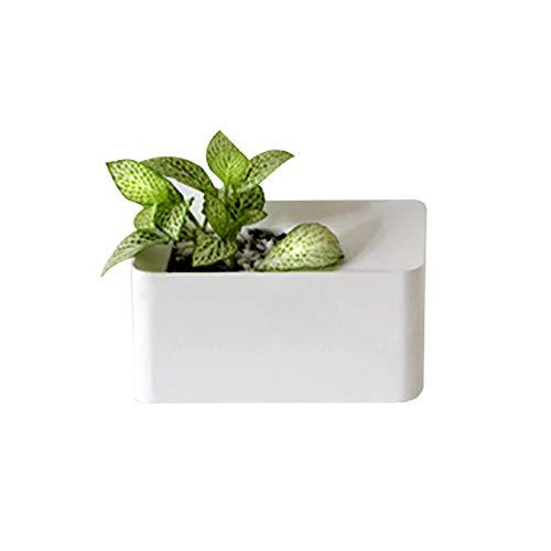 Nicole Concrete Plant Pot Mold Home Decoration Geometry Cement Flowepot Silicone Molds Handmade Craft Art