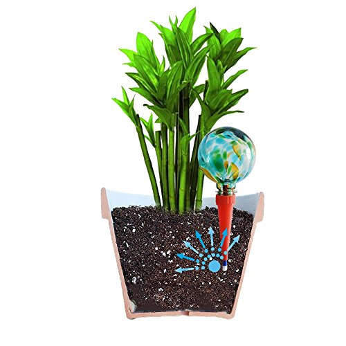2 Large Plantpal Decorative Glass Watering Globes Plant Watering Stakes Aqua Spikes Automatic Plant Watering Practical Watering System that really works Great For House Plants Green Glass