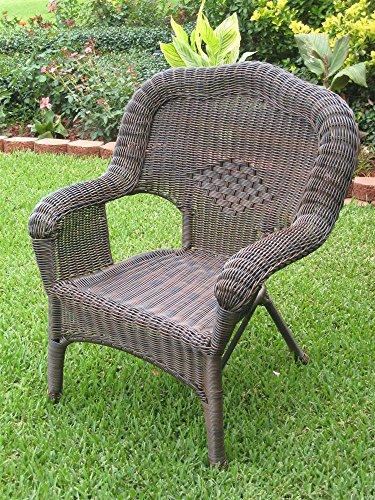 Wicker Resinsteel Outdoor Patio Chair - Set Of 2 antique Pecan