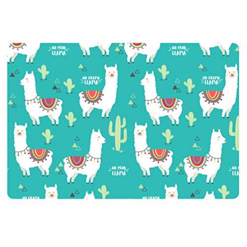 Coloranimal Indoor Outdoor Non Slip Door Mat Funny Cartoon Alpaca Cactus Design Rectangle Area Rugs for Patio Garage High Traffic Areas Entrance Shoes Scraper All Weather Exteriors