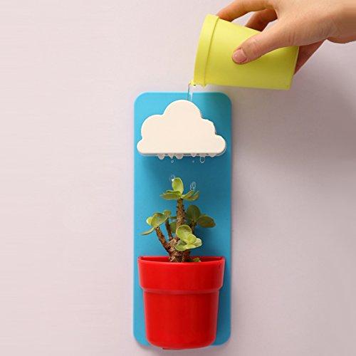 Szat New Creative Indoor Wall-hanging Cloudamp Flower Mount Rainy Potblue
