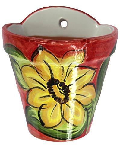 Wall Hanging Flower Pot - Spanish Sunflower