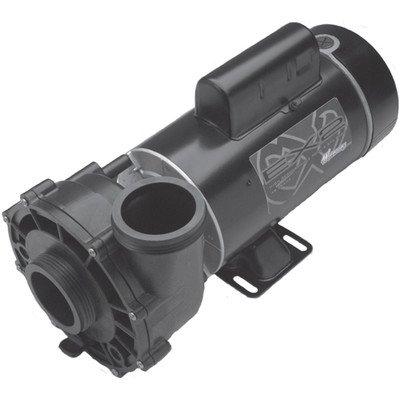 Waterway Plastics 3421821-1a Executive Dual Speed 2&quot Intake 45 Hp 230v Spa Pump