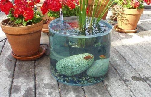Pop Up Pond Aquarium Pond Kit - Garden Water Feature