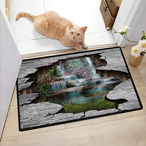 Ngjikaju decor Welcome Mat Indoor Waterfall Door Mat Funny Floor Mats for Home 16x24 Inch
