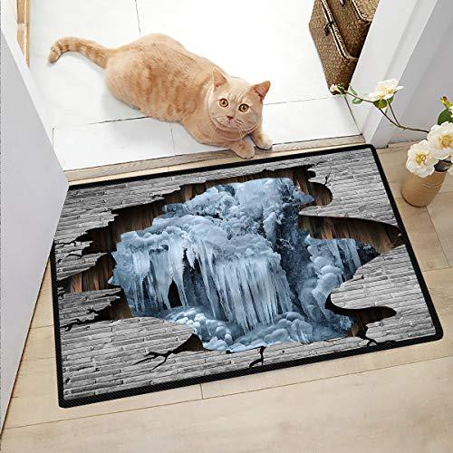 Ngjikaju decor Welcome Mat Indoor Waterfall Door Mat Funny Floor Mats for Home 36x48 Inch