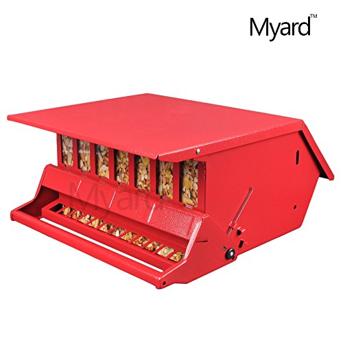 Myard Metal Hopper Seeds Squirrel Proof Bird Feeder  MBF 7511I-R Red