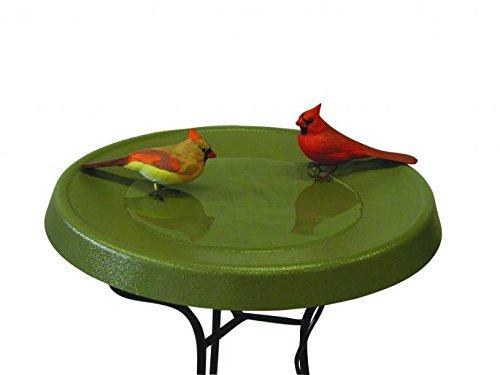 Birds Choice Olive Green Pedestal Heated Bird Bath