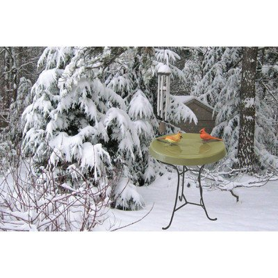 Birds Choice Pedestal Heated Bird Bath