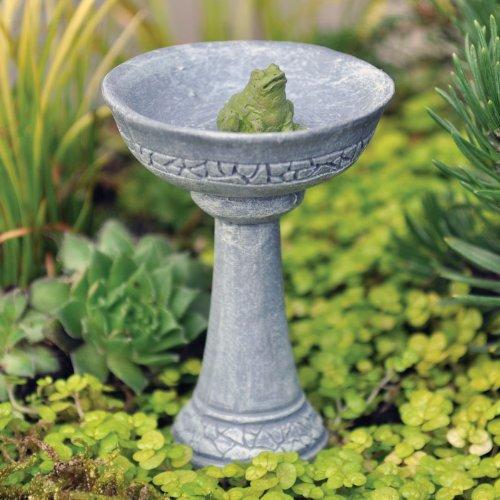 Fairy Garden Frog Birdbath