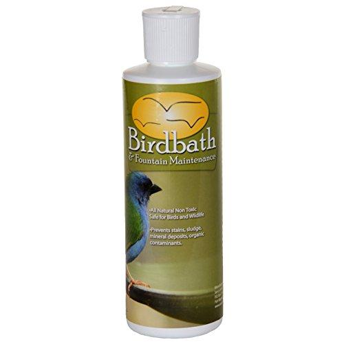 Sanco Bird Bathamp Fountain Maintenance 8 Oz