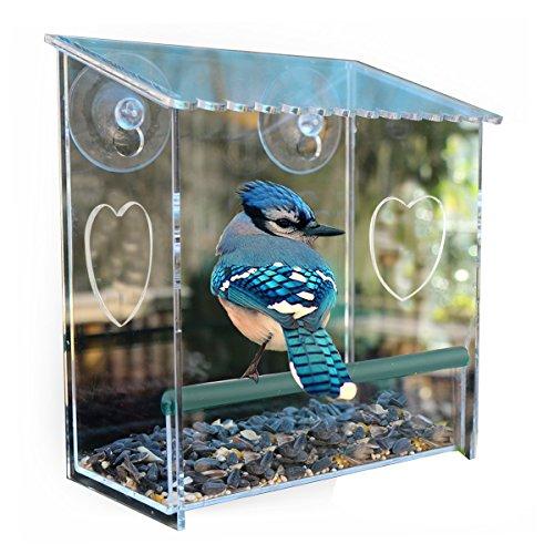 Window Bird Feeder Birdhouse With Strong Suction Cupsmodern Clear Acrylic Heavy Duty Suction Cups Window Door