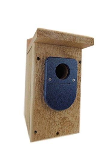 Jcs Wildlife Cedar Standard Bluebird House W Blue Poly Birdhouse Predator Guard