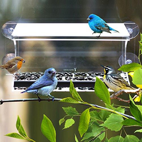 Window Bird Feeder By Ipsilone- Large Acrylic Window Feeder- Wide Opening- Easy Cleaningamp Refilling- Drain Holes