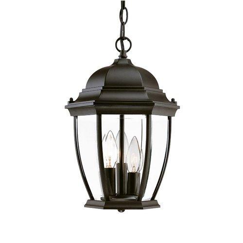 Acclaim 5036bk Wexford Collection 3-light Outdoor Light Fixture Hanging Lantern Matte Black