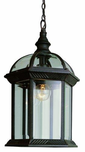 Trans Globe Lighting 4183 RT 1-Light Outdoor Hanging Lantern Rust 14-Inch Height