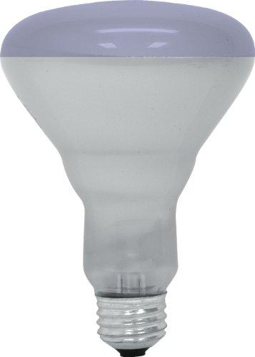 GE Lighting 20996 65-Watt R30 Plant Flood Light Bulb Plant Light1-Pack