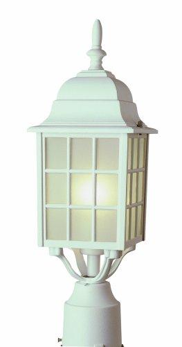 Trans Globe Lighting 4421 VG 18-12-Inch 1-Light Outdoor Post Top Lantern Verde Green