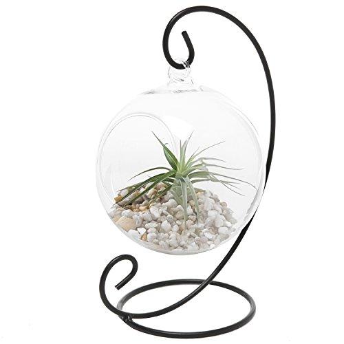 MyGift Charming Clear Glass Hanging Planter Terrarium GlobeTea Light Candle Holder Lantern wBlack Metal Stand