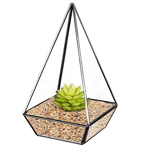 Homeideas Clear Glass Metal Faceted Tabletop Air Plant Terrarium Box  Decorative Tea Light Candle Holder 6 X