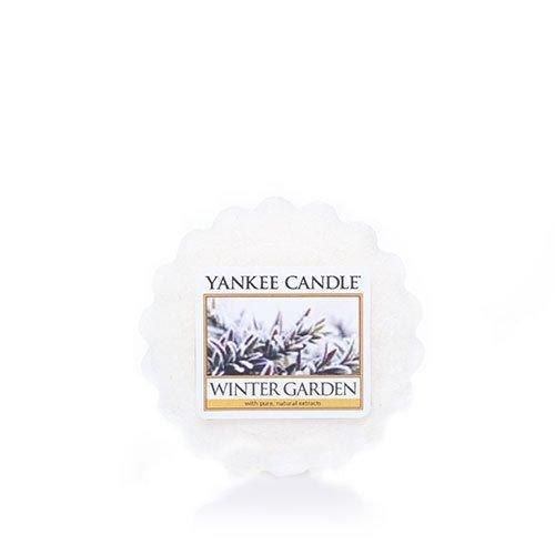 Yankee Candle Winter Garden Tarts Wax Melts