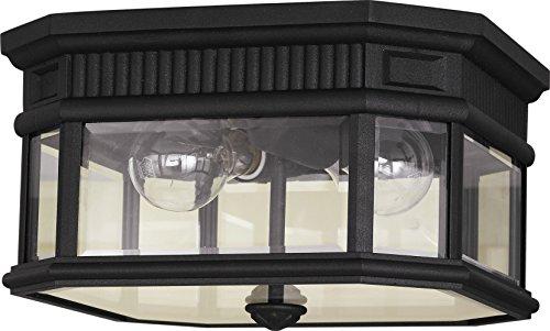 Murray Feiss OL5413BK Cotswold Lane Ceiling Fixture 2 Light 120 Watts Black