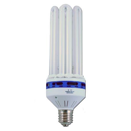 150 Watt CFL 6400K Compact Fluorescent Lamp VegClone Grow Light