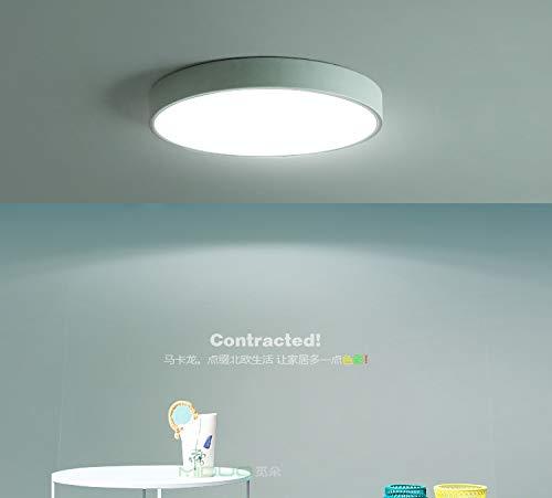 Metermall 5CM 20W LED Modern Green Shell Round Shape Celling Lamp for Living Room Bedroom Lighting White Light Youth Green 305cm 20W