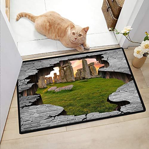 Ngjikaju decor Outside Rugs Patio Stonehenge in The Sun Door Mats Inside Playroom Rug 20x32 Inch