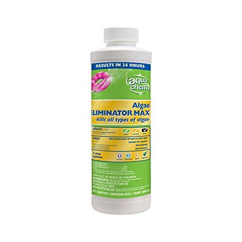 Aqua Chem Algae Eliminator Max Algaecide For Swimming Pools 1-quart