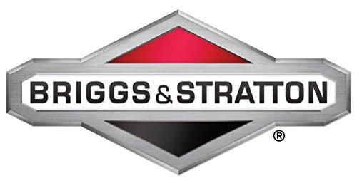 Briggs Stratton Gasket Set-valve Part  795200