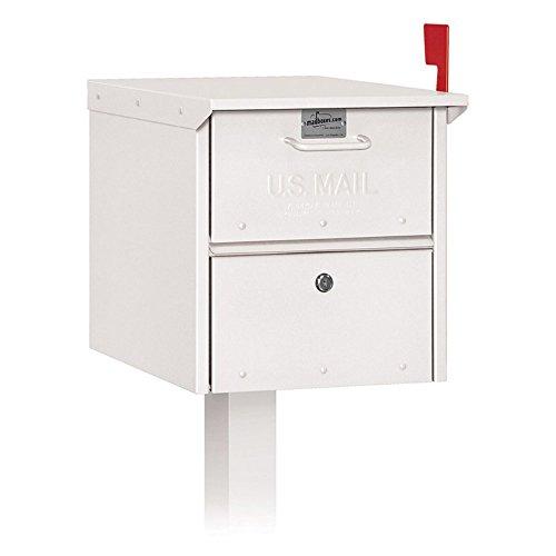 Salsbury Roadside Mailbox